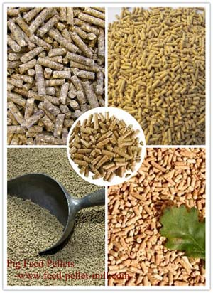 pig feed pellets for pig breeding industry