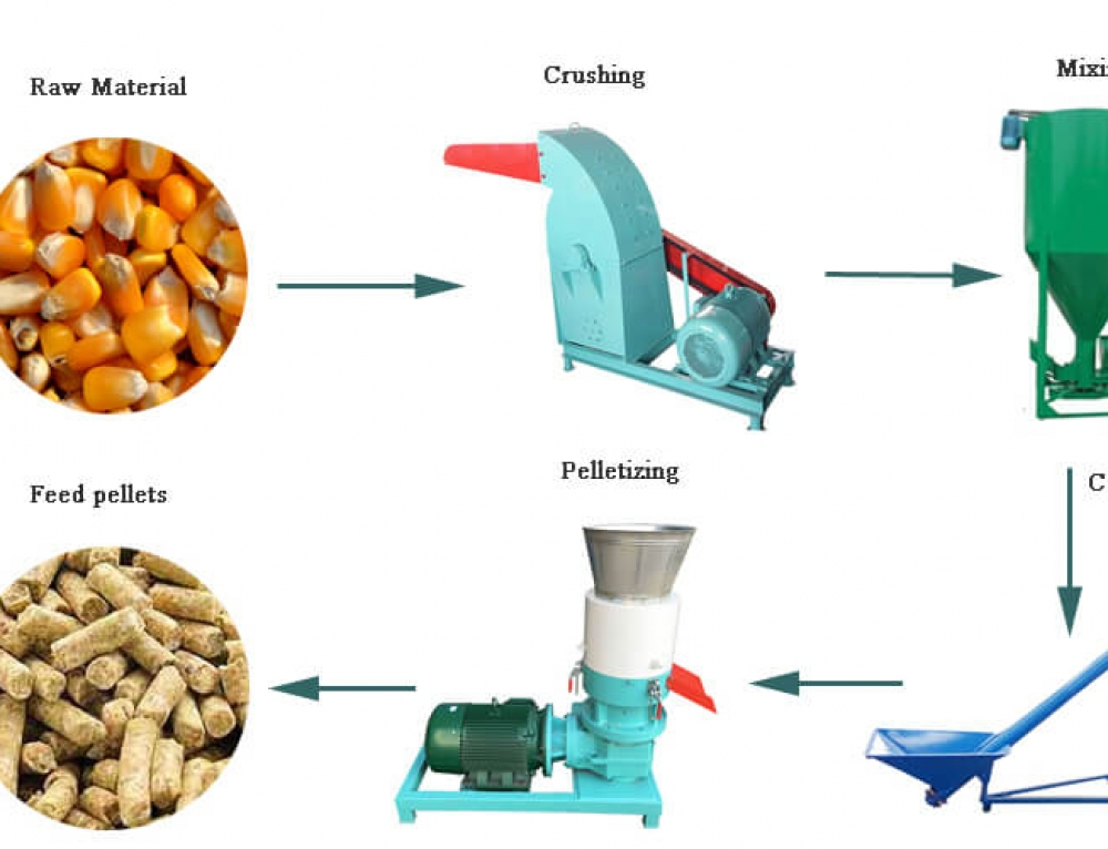 200-300kg/h Small Feed Pellet Line
