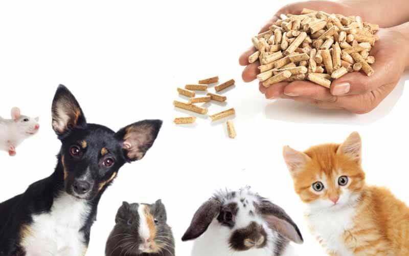 Pet Feed Pellets