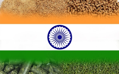 Indian Feed Industry