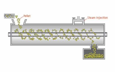 Steam Conditioning in Feed Pelletizing